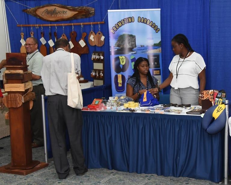 Senator Mcclean: Diaspora Conference A Success
