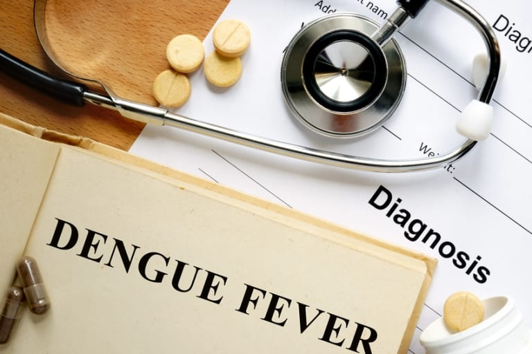Dengue Cases On The Rise