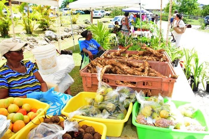 Exhibitors displaying their goods at the 2016 World Food Day celebrations, at the Ministry of Agriculture, Graeme Hall, Christ Church. (B.Hinds/BGIS)