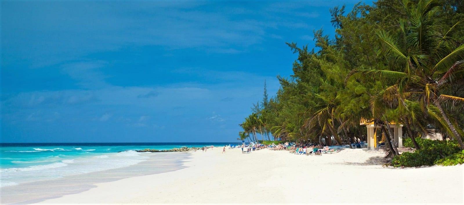 Barbados Needs Your Vote