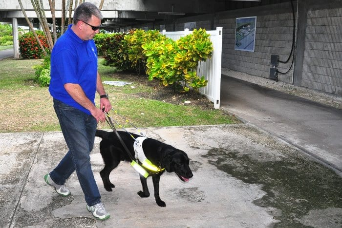 Minister Supports Use Of Service Dogs