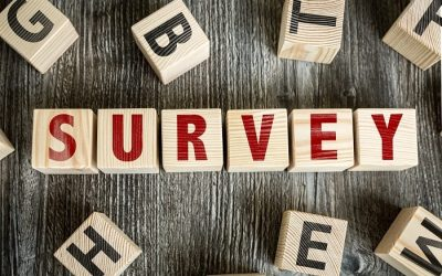 Ministry To Conduct Survey In The Belle