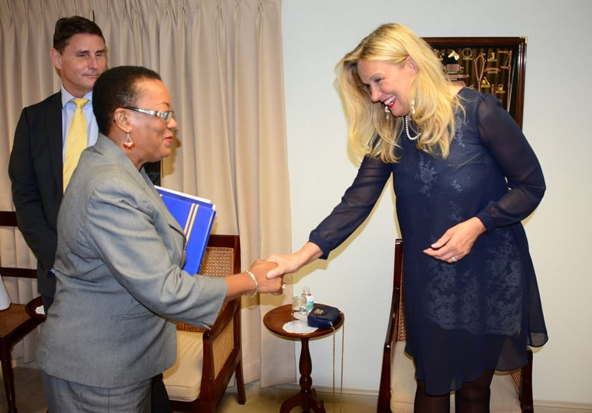 Swedish Envoy Meets Foreign Minister