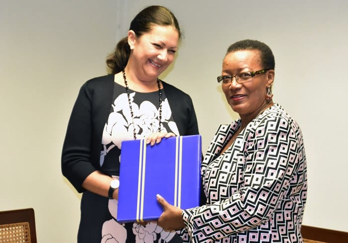 Norway's Envoy Meets Foreign Minister