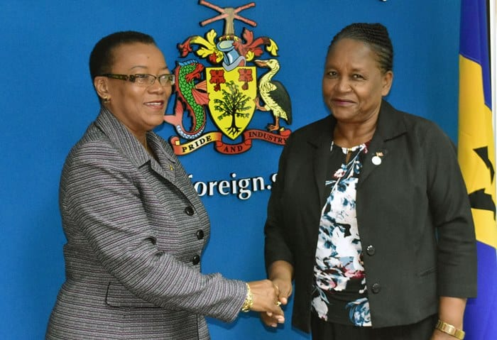 CNO President Visits Foreign Minister