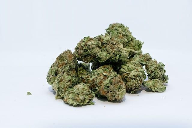 Consultation On Marijuana Postponed