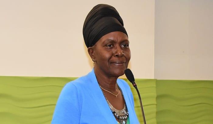 Barbados Hosts National Consultation