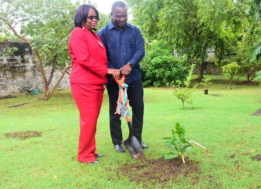 Donville_Inniss_PAHO_tree_planting
