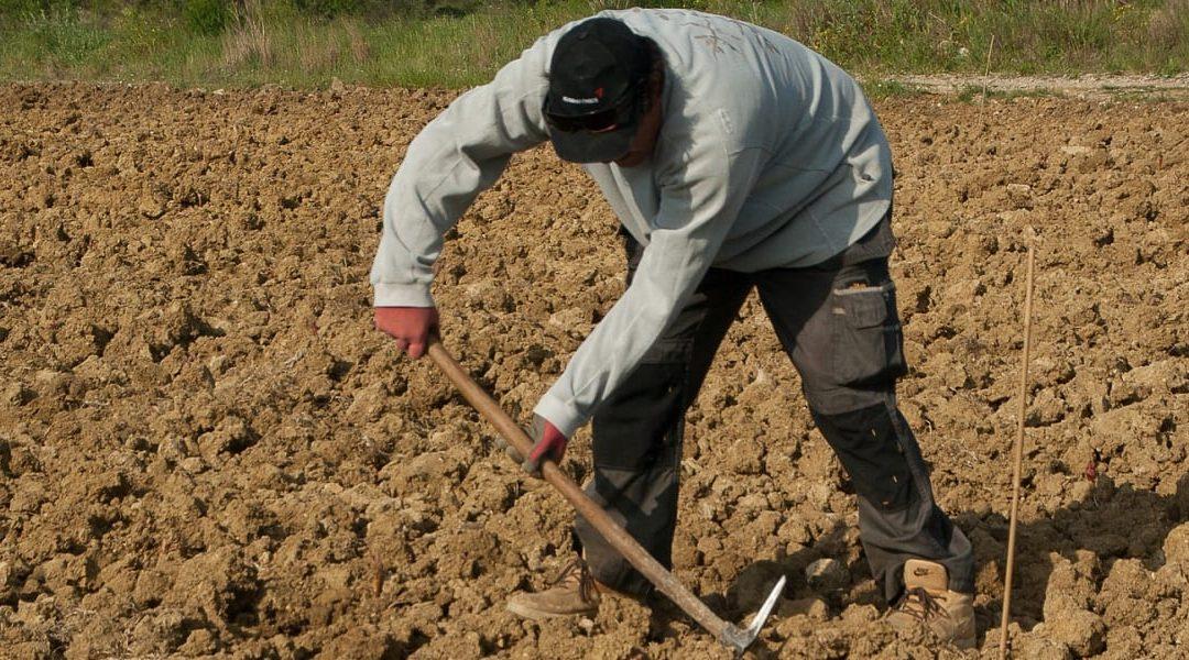 Protocol On Migrant Labour Established