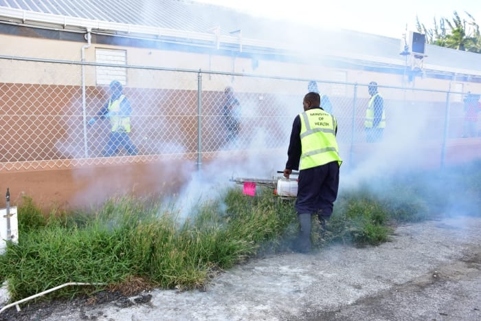 Fogging Schedule For February 22 – 26