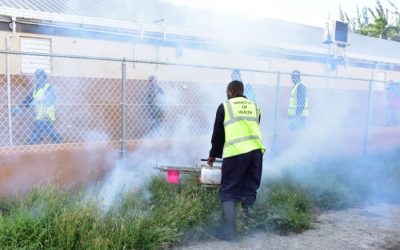 Fogging Schedule For August 17 – 21