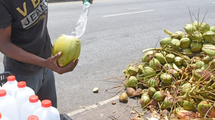 Coconut Vendors Meeting Nov. 22