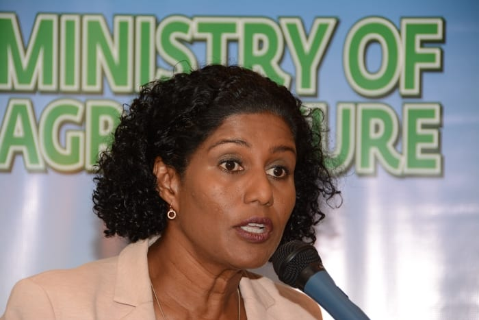Revitalised Agriculture Sector Key To Recovery