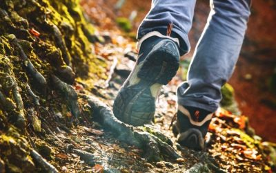 Hike For Wellness October 25