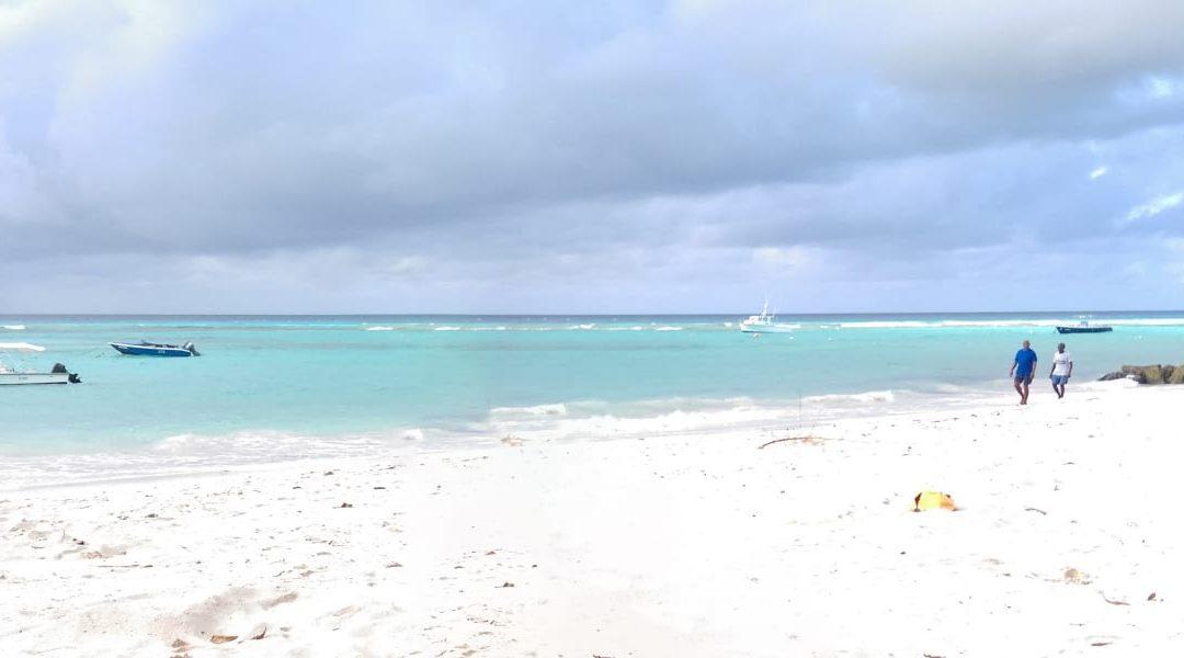 Update On Worthing Beach