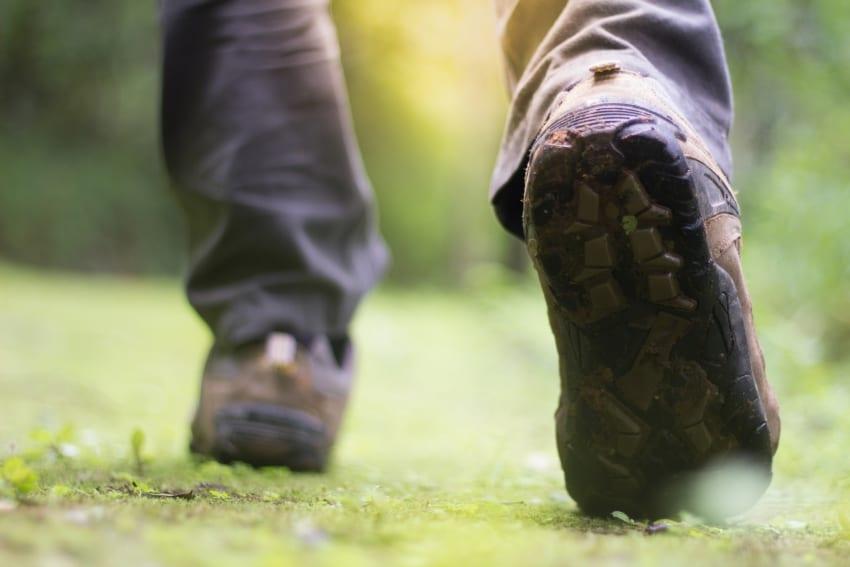 Wellness Hike On Saturday, September 15