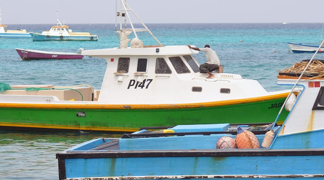 Boat Owners Urged To Remove Boats From Water