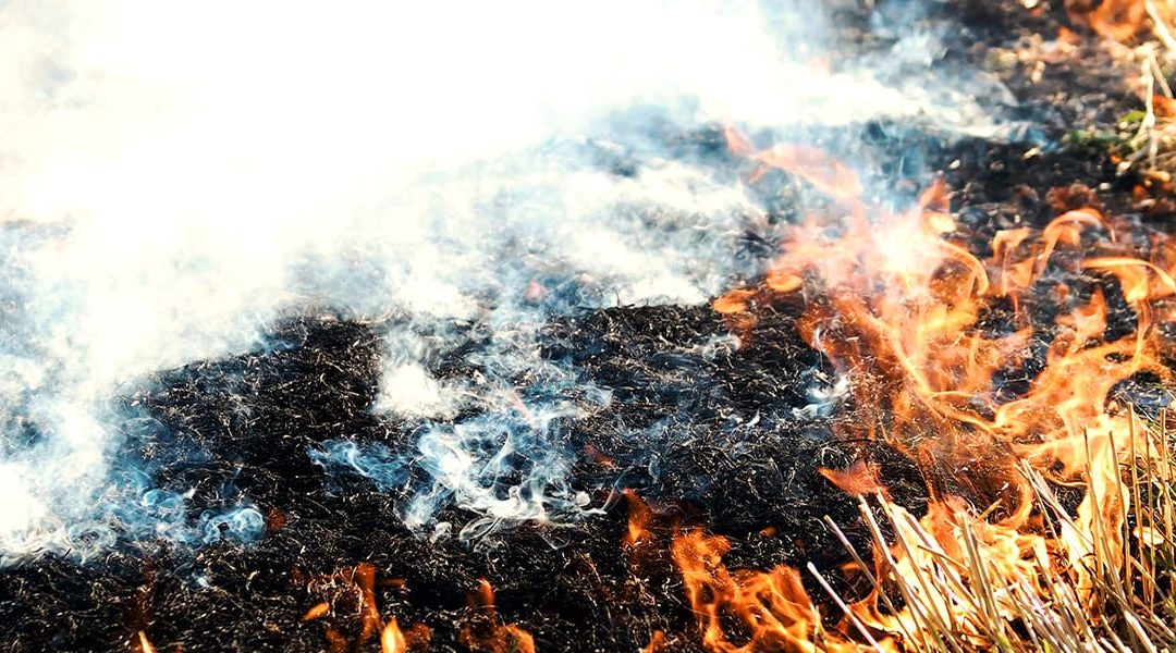 Significant Increase In Fires For 2019