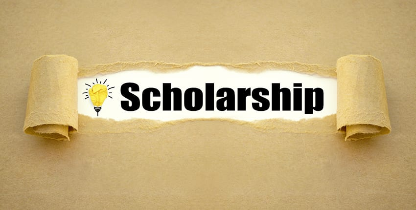 New Zealand Offers 20 Scholarships