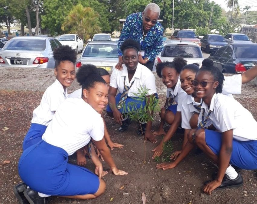 Students Plant Trees To Reduce Carbon Footprints