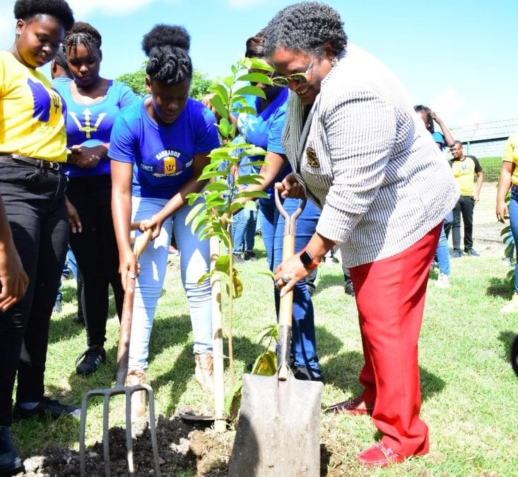 Barbadians Urged To Create Nurseries