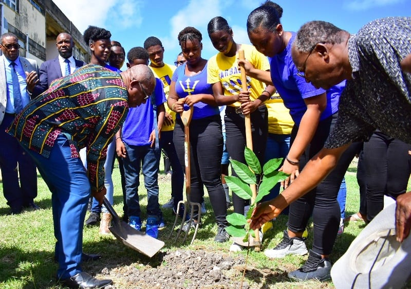 'Million Trees For 2020' Project Launched At Daryll Jordan