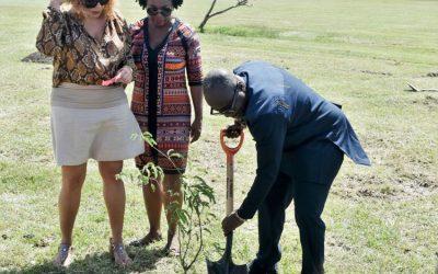 Ghanaian Delegation Plant Trees At Botanical Garden