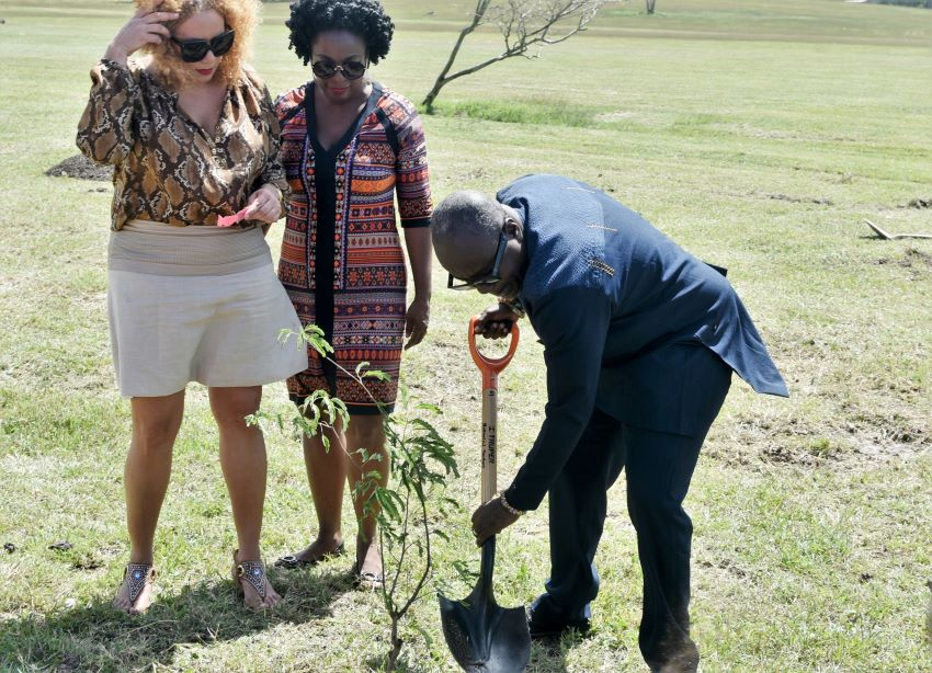 Ghanaian Delegation Plant Trees At Botanical Garden