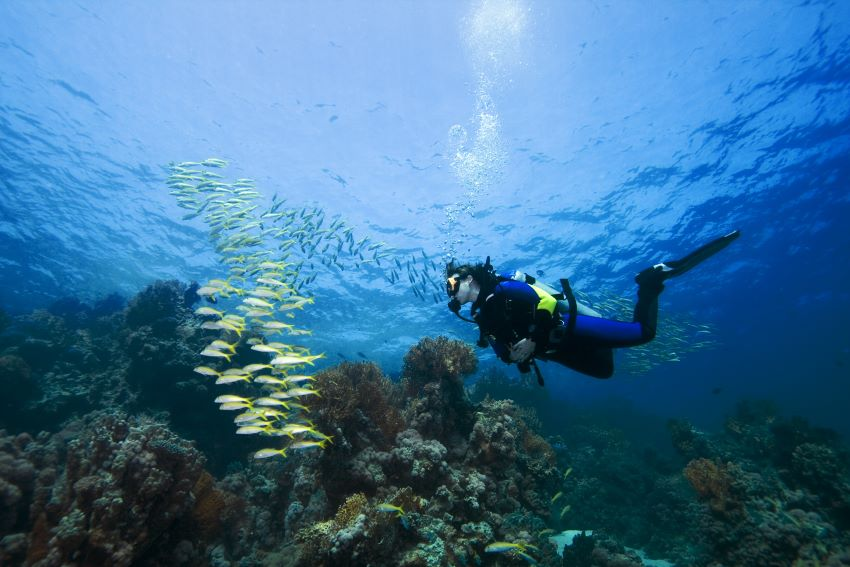 IFREMER Conducting Undersea Research In Barbados